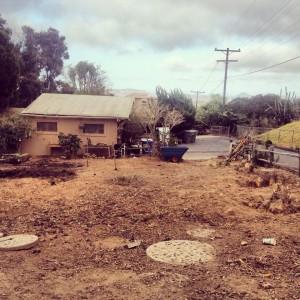 garden project5