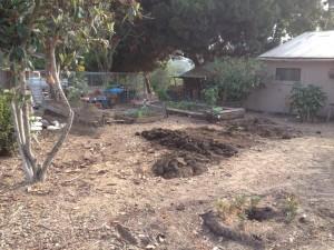 garden project8